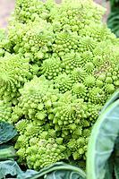 Chives and Cauliflowers (Romanescu). Puigcerdà market. La Cerdanya. Girona. Catalonia. Spain.