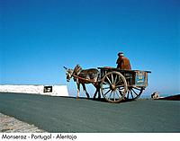 Portugal _ Monseraz _ Alentajo
