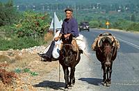 Greece _ The Pelonnese _ Nauplie Road in Sparta