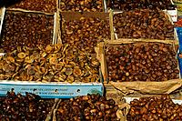Morocco _ Gastronomy _ Dates and Figs