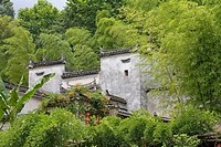 House surrounded by trees, Hongcun, Anhui, China