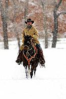 Cowboy out with his horse in winter, Shell, Wyoming, Usa