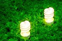Energy-saving light bulbs