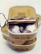 cans of sardines