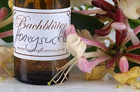 Bach Flower Stock Remedy