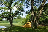 Yellow tent at Västersjön, Ängelholm, Skåne, Sweden