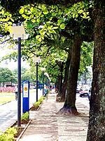 santos sidewalk road with people