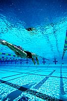 Female swimmer in pool underwater view