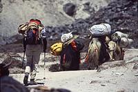 A woman trekking towards Everest base camp