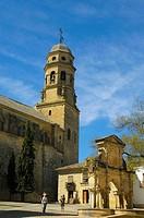 Santa Maria´s fountain and cathedral  (16th century) in Santa Maria square, Baeza. Jaen province, Andalucia, Spain