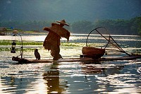 Rear view of a fisherman fishing in a river, XingPing, Yangshuo, Guangxi Province, China