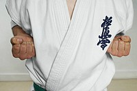 Mid section view of a man practicing karate