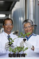 African scientists examining seedlings in factory