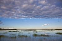 Africa, Namibia, Etosha National Park, Lake and clouds