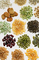 LEGUME The grains from the top to the bottom and from the left to the right : coco beans, grains of sesame, grains of hulled sunflowers, grains of fav...