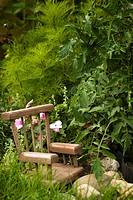 Little Chair in Garden.