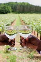 African couple toasting wineglasses near vineyard
