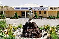 Falcon clinic Abu Dhabi Falcon Hospital, Emirat Abu Dhabi, United Arab Emirates, Asia