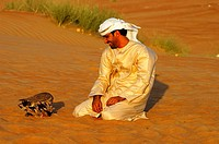 Arabian falconer and his hunting falcon in the desert sand, Dubai, United Arab Emirates, UAE, Middle East