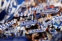 German soccer fans, supporters of FC Schalke 04 waving their blue and white scarves in support of their team, Gelsenkirchen, North Rhine-Westphalia, G...