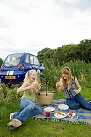 Young women pick_nicking by electric car