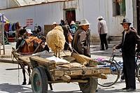 Streets scene with sheep on cart, Gyantse, Tibet