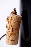 Close up of cork on a corkscrew