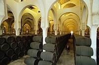 Sherry barrels in long rows in the horseshoe_arched wine depot La Mezquita of the Bodegas Pedro Domeq, Jerez de la Frontera, Cadiz province, Andalusia...