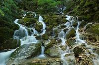 Water flows after heavy rains, Karstgestein