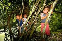 Three children climbing on trees, Agua Azul Cascades, Chiapas, Mexico
