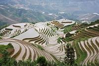 China Guangxi Province Guillin Longshen terraced rice fields