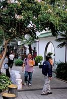 Yuen Po Street Bird Garden, Mong Kok, Kowloon, Hong Kong, China, Asia