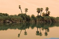 Umm El Ma lake, Erg Awbari, Sahara desert, Fezzan, Libya, North Africa, Africa