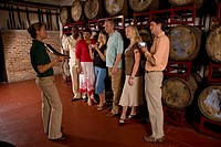 Side view of people standing by wine barrels in winery
