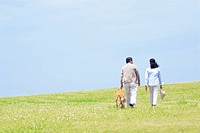 The Senior Husband And Wife Who Take A Walk In The Meadow With A Dog