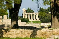 europe, italy, campania, paestum, temple of cerere