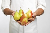 Chef holding pears (mid section)