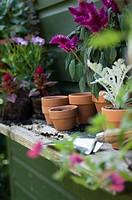 Flower pots on the shelf of a shed