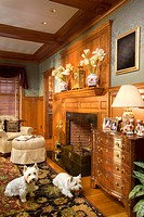 Two west highland terrier dogs in traditional living room