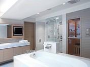 Modern bathroom with large bathtub and sauna