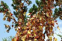 Wishing tree at Taipo, Hong Kong