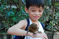 A tarsier on the hands of a boy, Bohol, Philippines