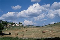 Country Hay Roll In Switzerland