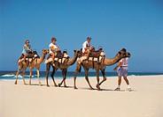 Family enjoying camel ride on beach at Port Macquarie, New South Wales Australia