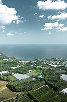 jeju island take a picture in sky