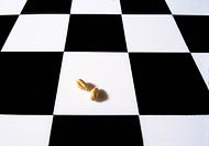 Chess board (checkerboard, cequerboard) with two grains of wheat. Story (legend) of the Indian king Shihram and the wise man Sissa bin Dahir