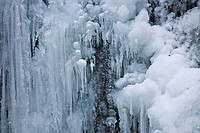 Ice formations along a stream in Steinwandklamm Ravine, Lower Austria, Austria, Europe