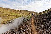 Hiking trail alongside a hot spring, Hengill geothermal area, Hveragerði, Iceland, Atlantic Ocean