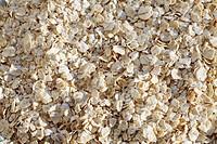 Oat flakes, rolled oats