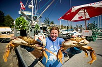Woman holding up fresh crabs, Ganges Harbour, Salt Spring Island, Gulf Islands, British Columbia, Canada